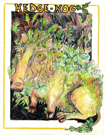"""Hedge Hog"" pencil crayon on paper"